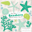 Emerald Isle Seashell Clipart