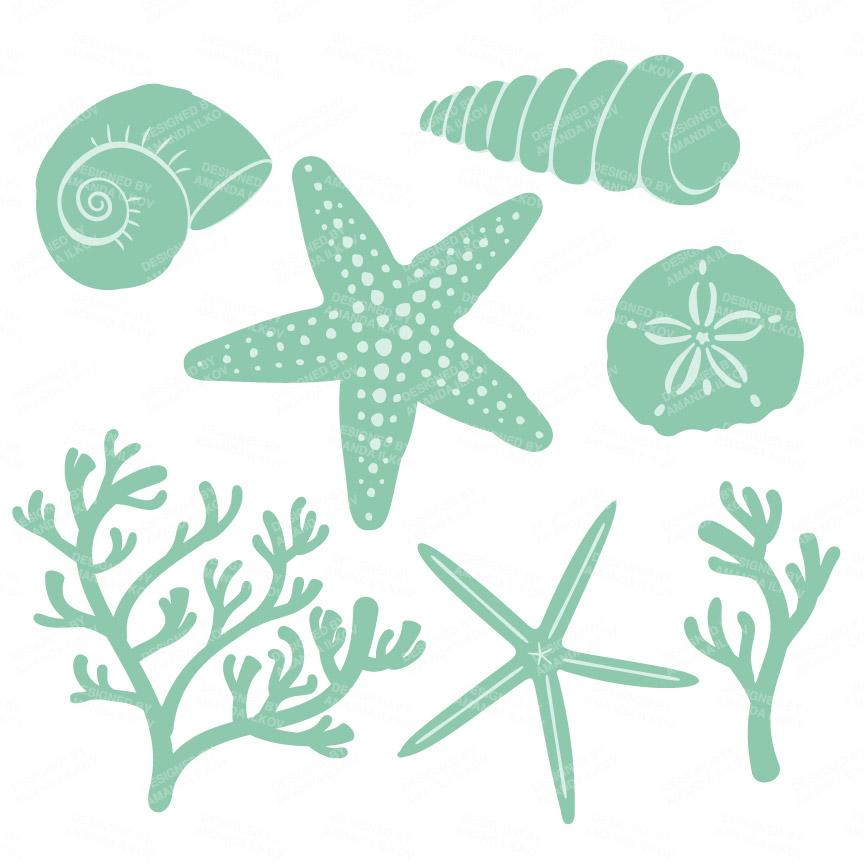 Mint Seashell Clipart