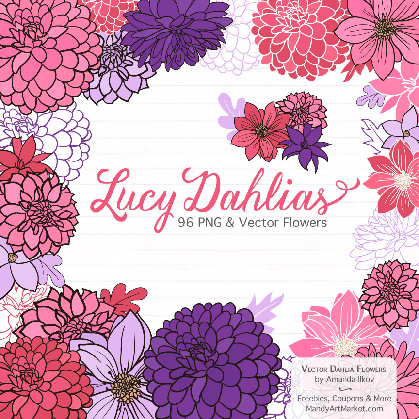 Pink & Purple Dahlia Clipart