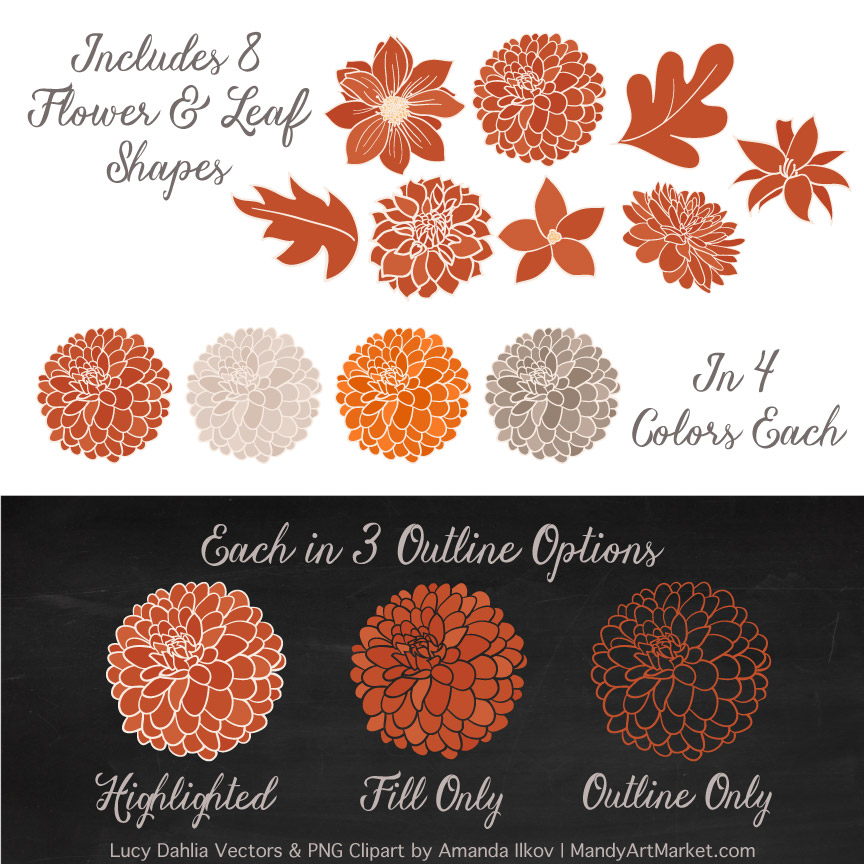 Pumpkin Dahlia Clipart