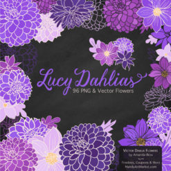 PurpleLucyDahlias package 2 247x247 - Home