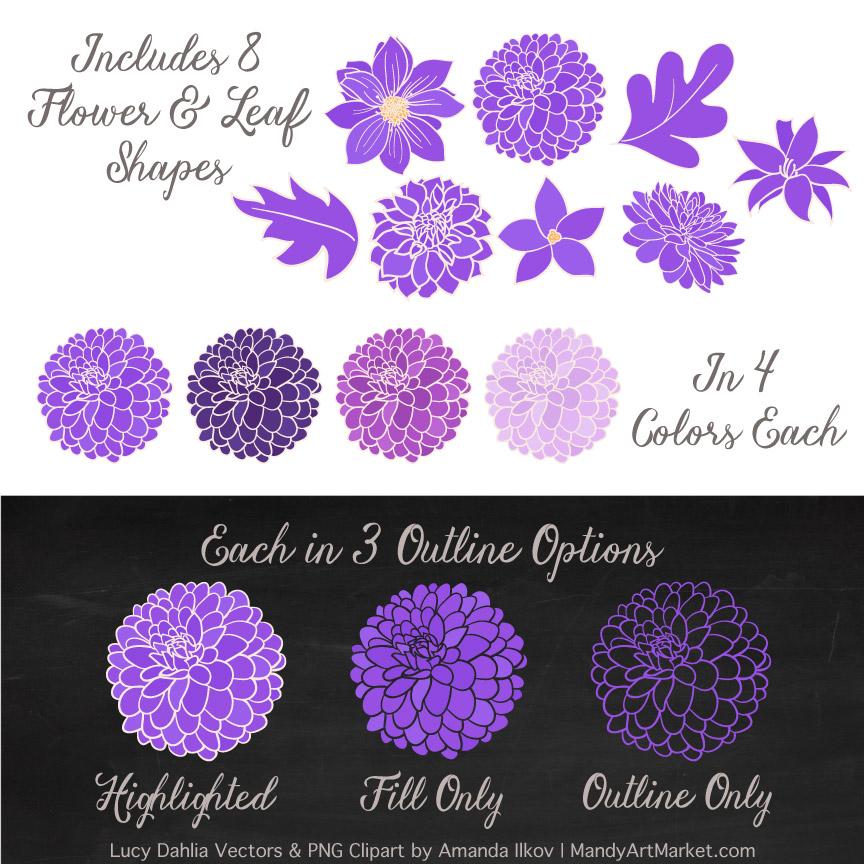 Purple Dahlia Clipart Set