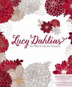 Ruby Dahlia Clipart