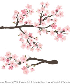 Free Cherry Blossom Clipart 3