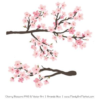Free Cherry Blossom Clipart 3