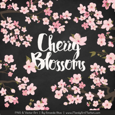 Free Cherry Blossom Clipart 4