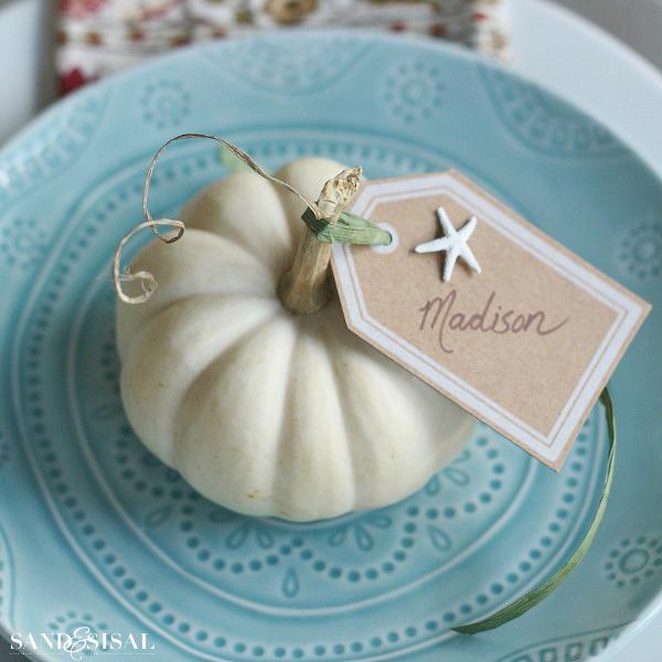 Succulent Pumpkins 3