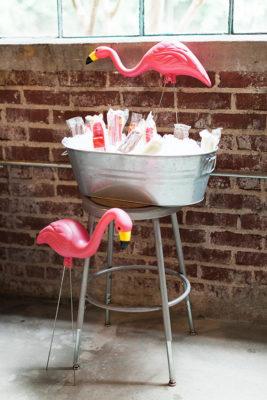 Flamingo Gardians