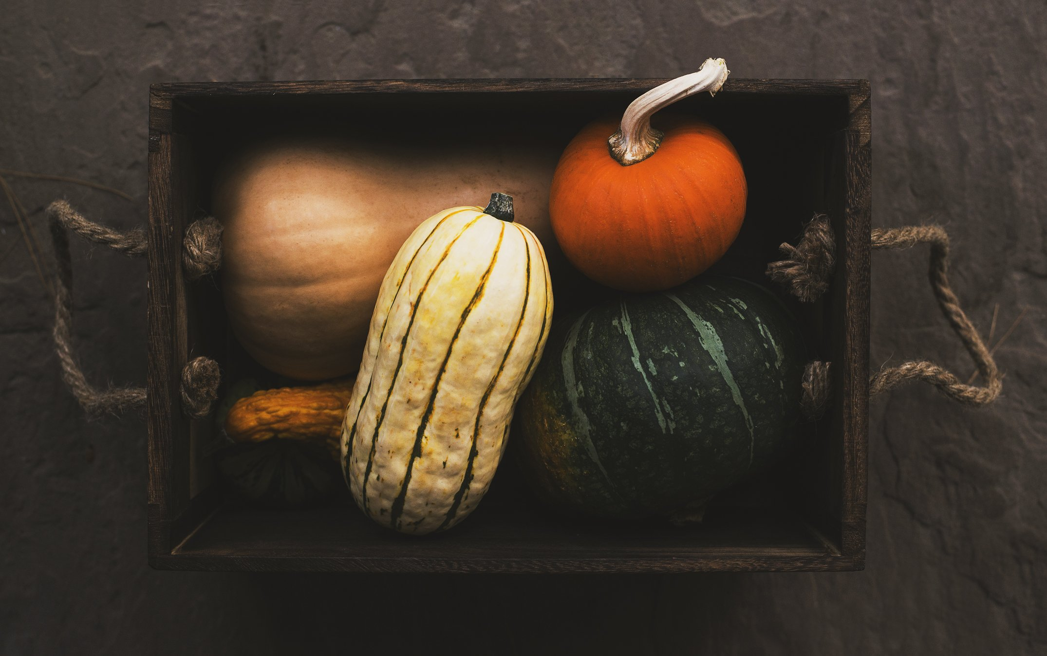 Photo of Box of Harvest Vegetables