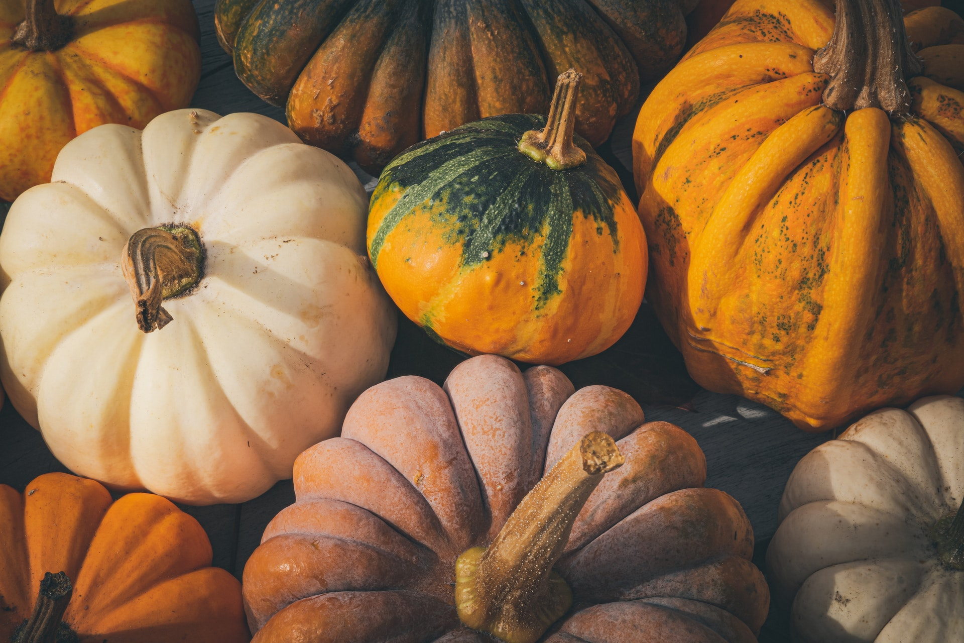 Photo of a Frosty Assortment of Pumpkins