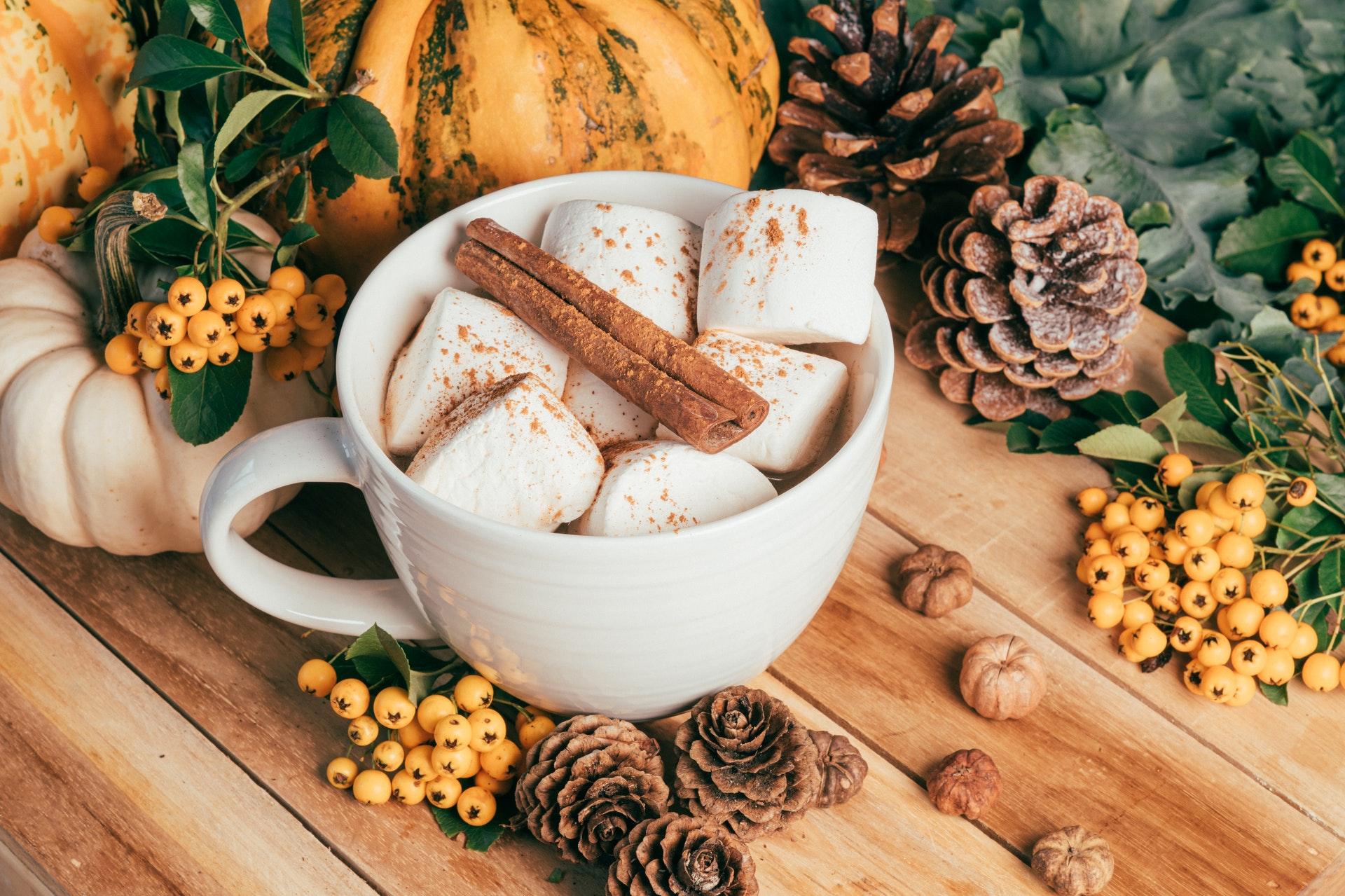 Photo of a Mug Full of Marshmallows