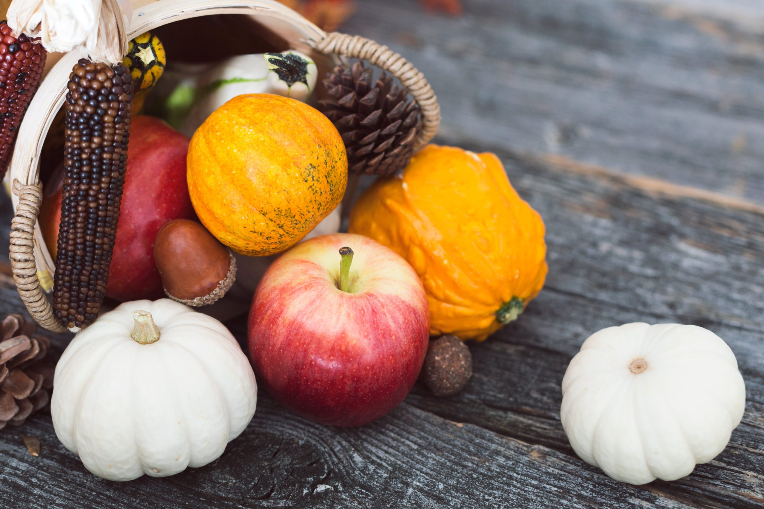 Photo of Harvest Fruits & Vegetables