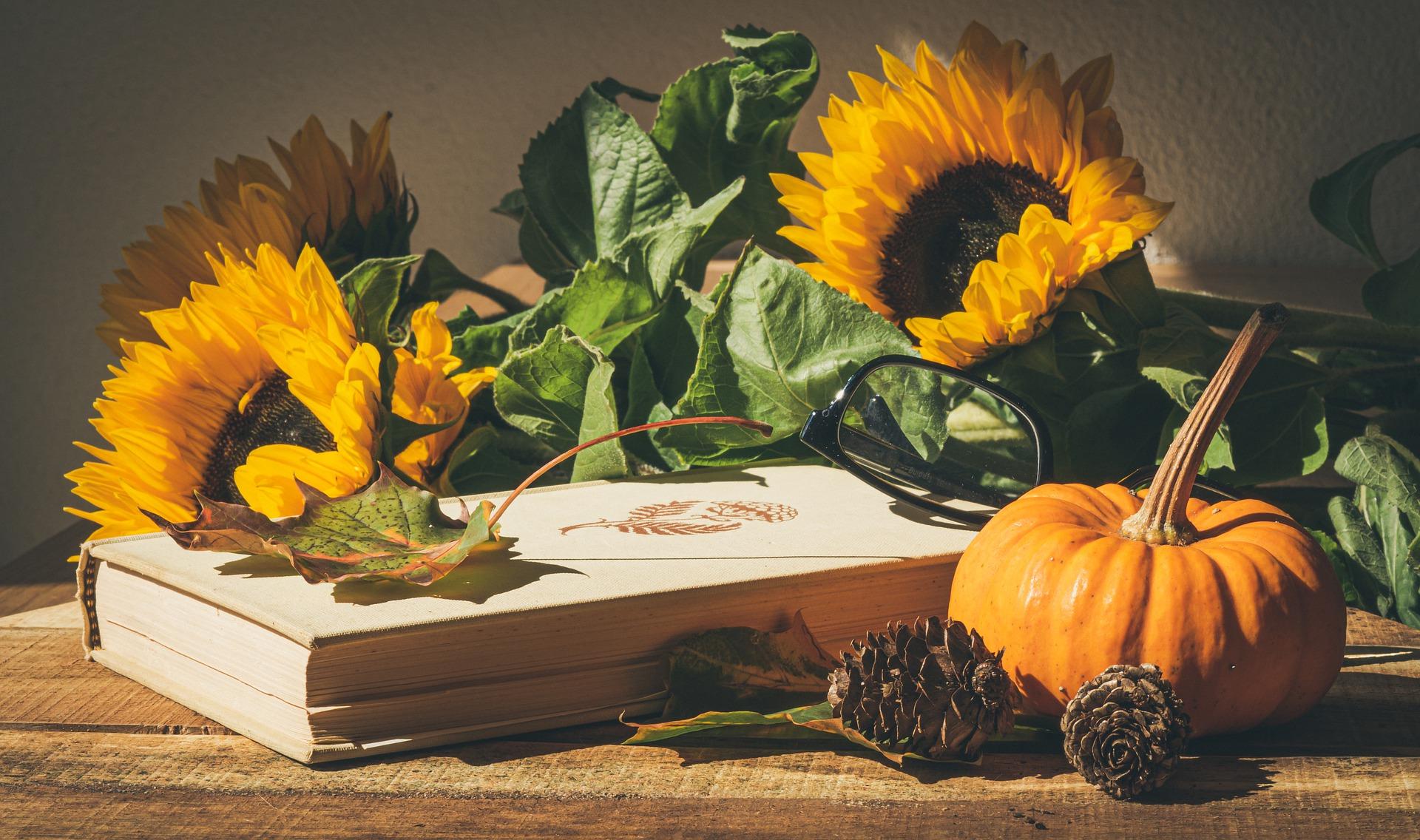 Photo of Pumpkins & Sunflowers
