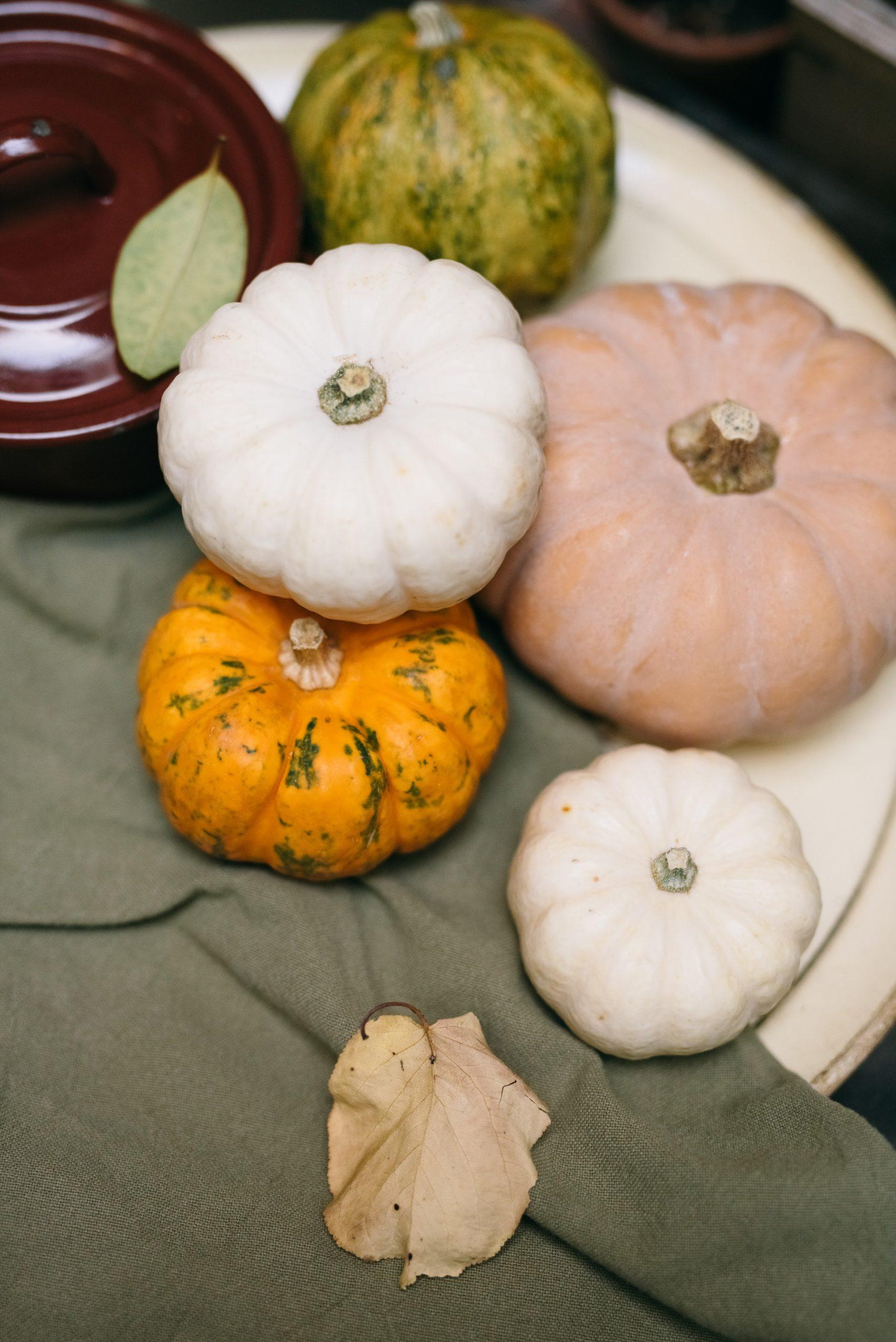 Photo of Pumpkins on a Green Napkin