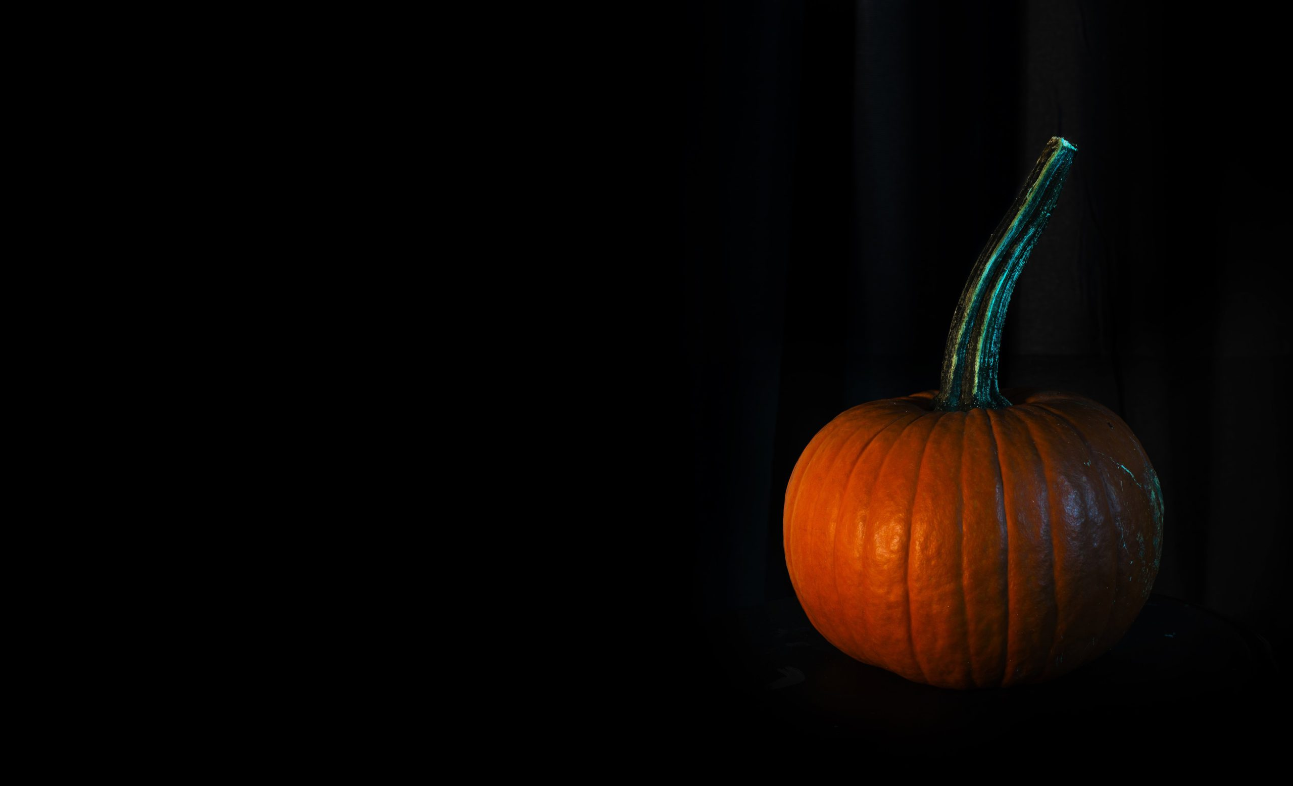 Photo of a Small Pumpkin on Black