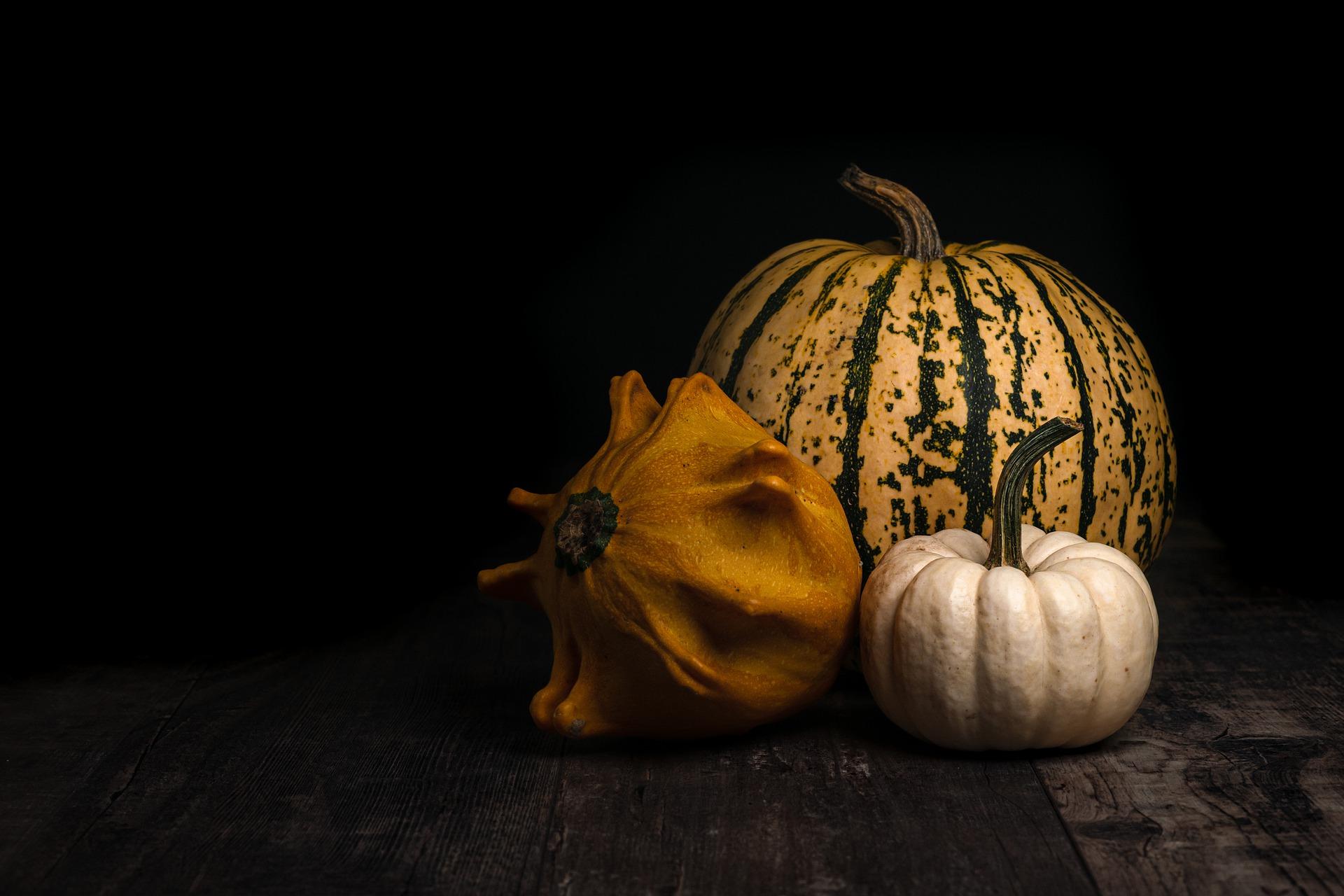 Photo of Moody Pumpkins on Black
