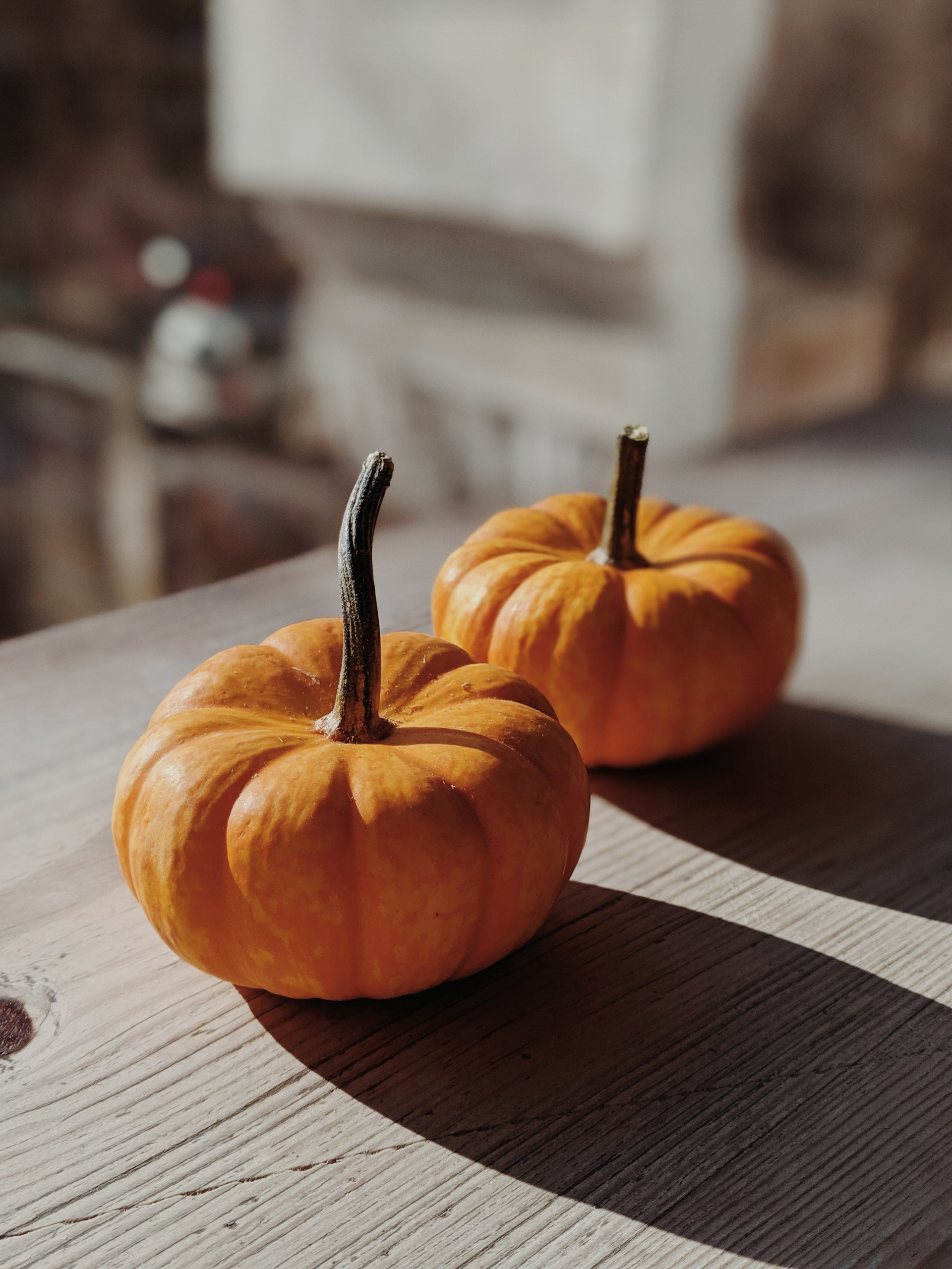 Photo of Two Pumpkins with Long Shadows