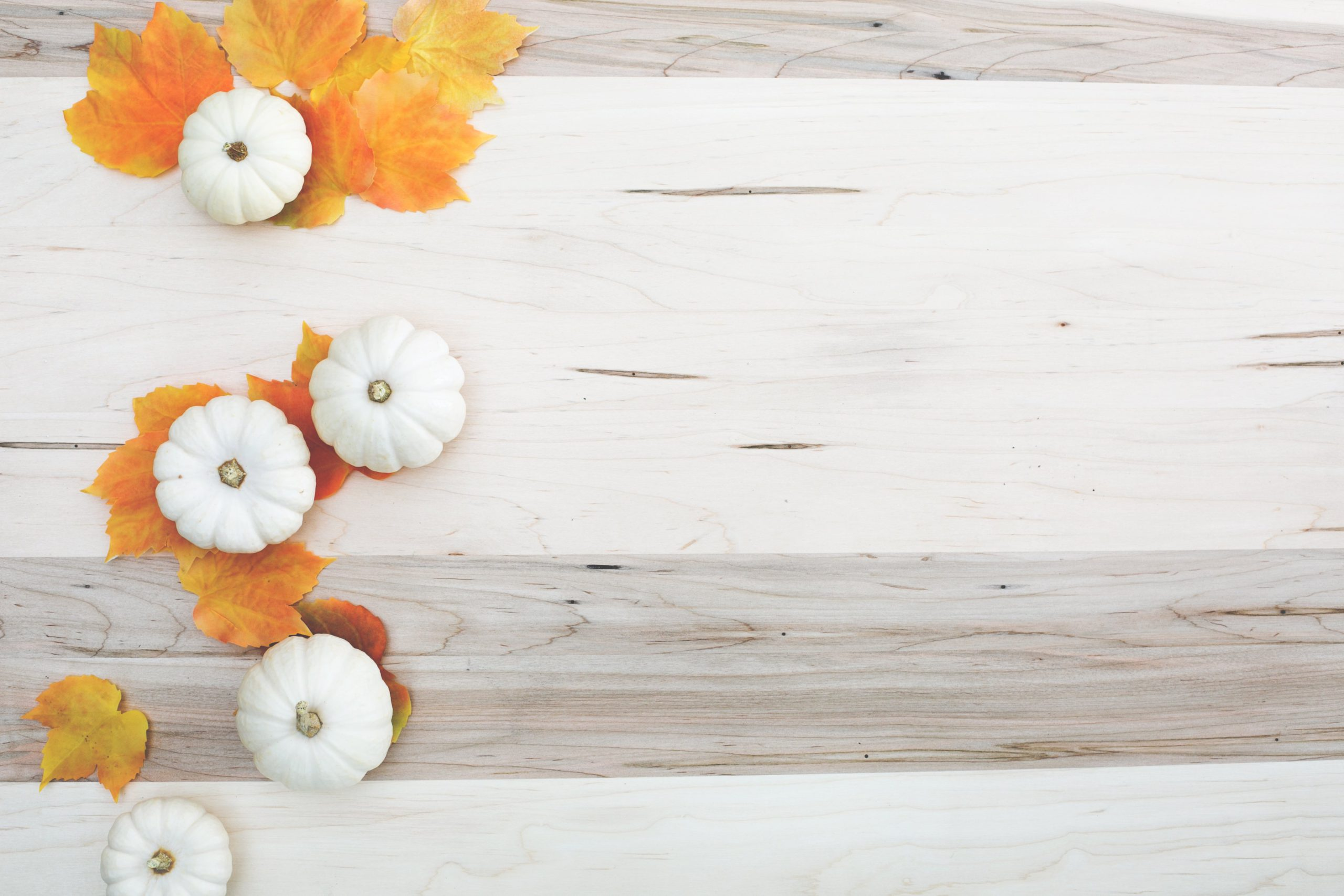 Photo of White Pumpkins & Orange Leaves